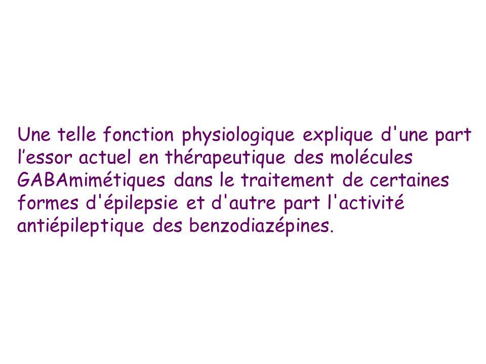 Une telle fonction physiologique explique d une part l'essor actuel en thérapeutique des molécules GABAmimétiques dans le traitement de certaines formes d épilepsie et d autre part l activité antiépileptique des benzodiazépines.