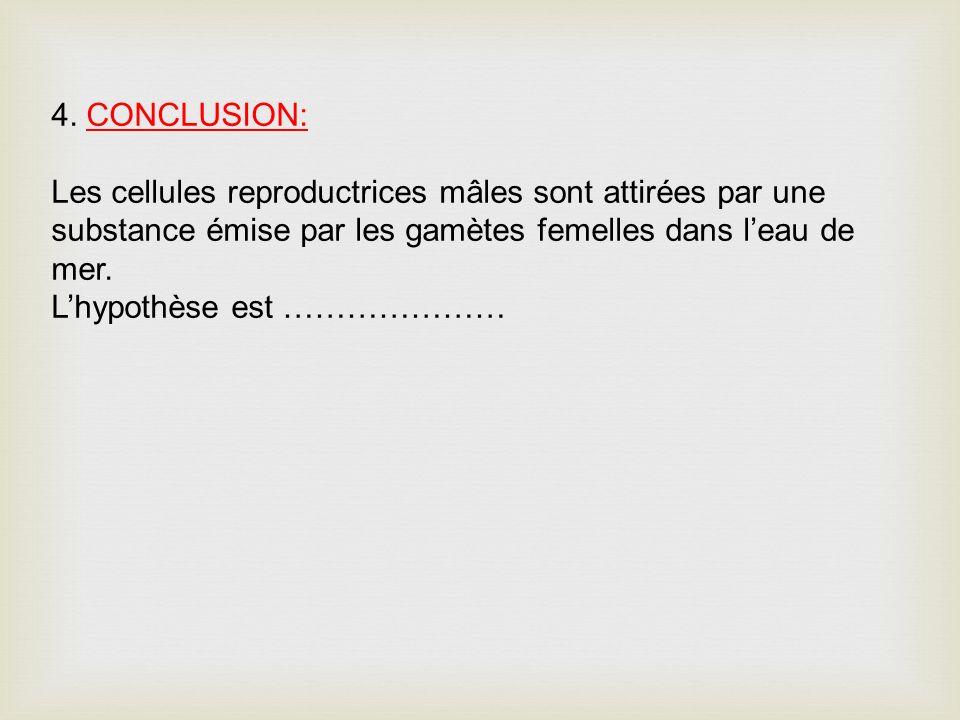 4. CONCLUSION: Les cellules reproductrices mâles sont attirées par une substance émise par les gamètes femelles dans l'eau de mer.