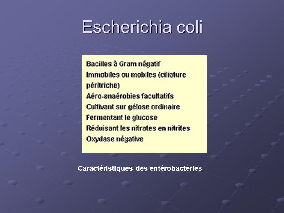 Caractéristiques des entérobactéries
