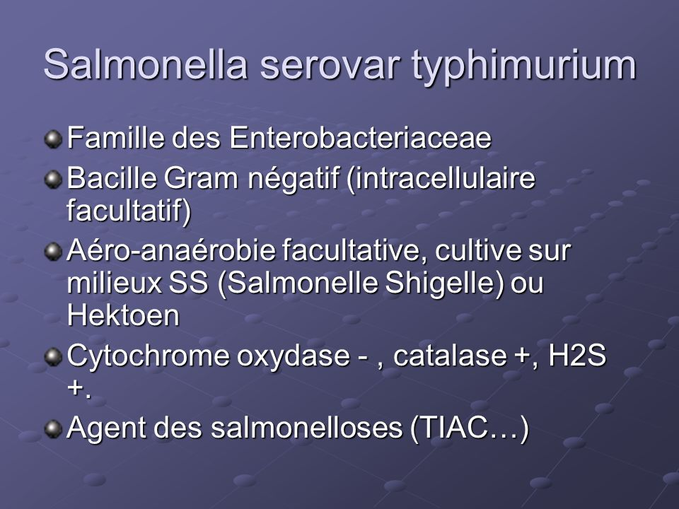 Salmonella serovar typhimurium