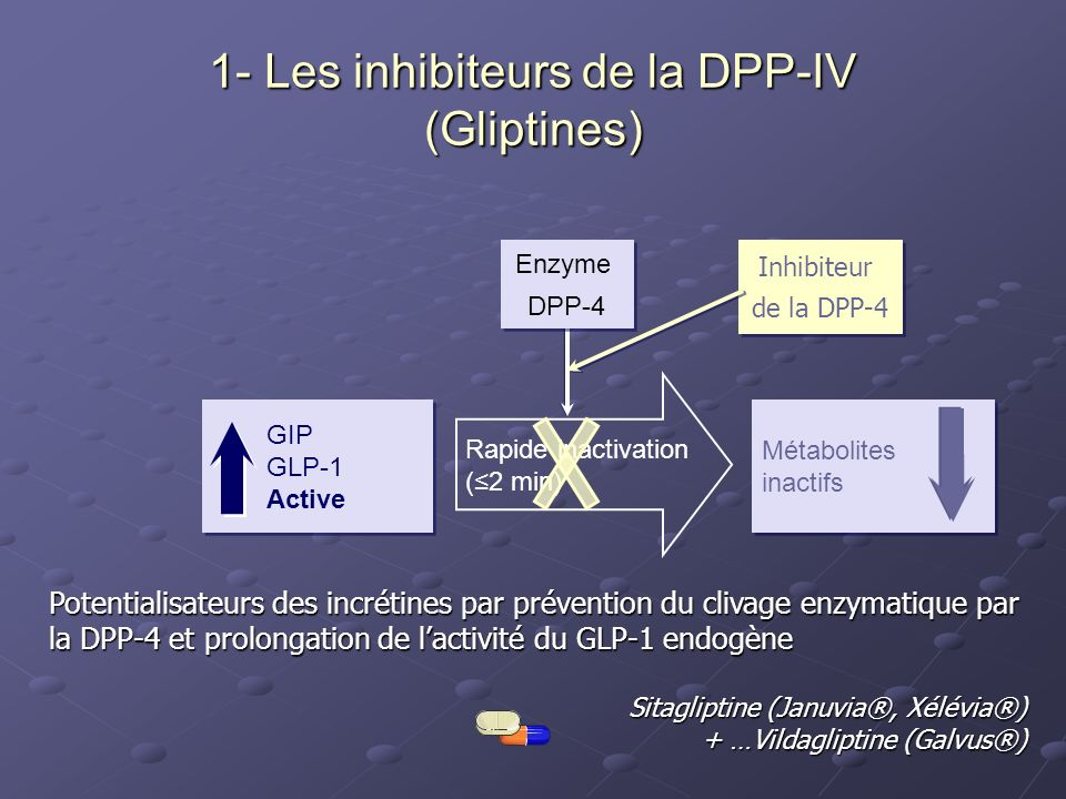 1- Les inhibiteurs de la DPP-IV (Gliptines)