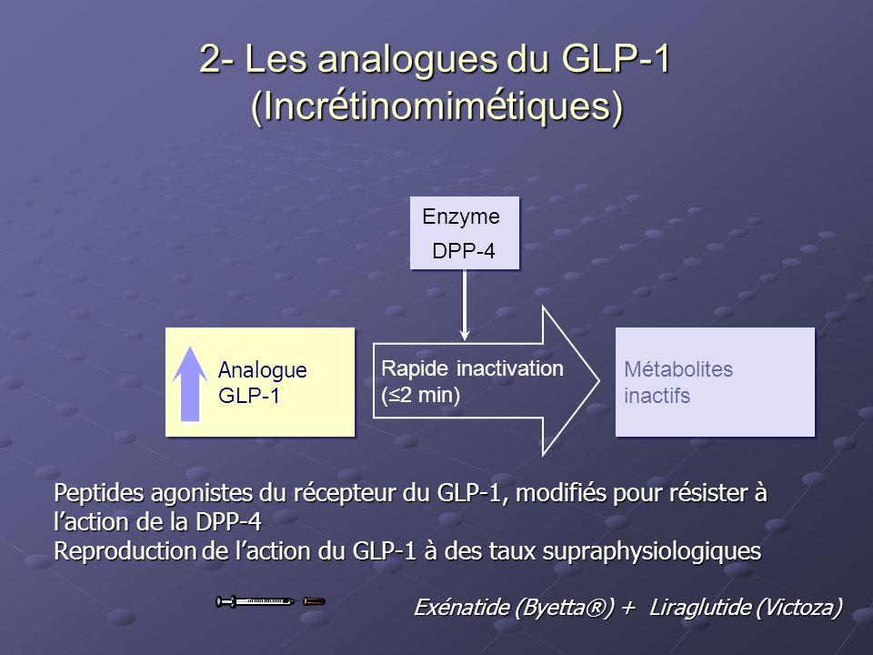 2- Les analogues du GLP-1 (Incrétinomimétiques)