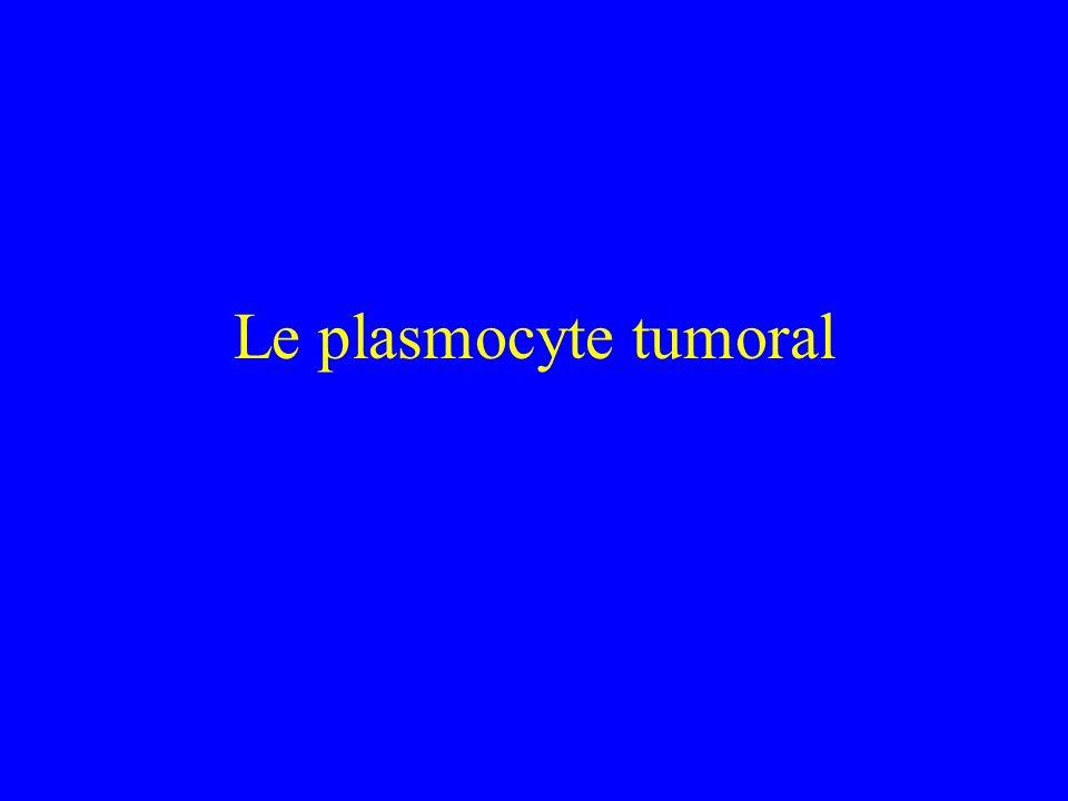 Le plasmocyte tumoral