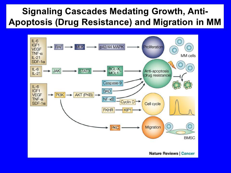 Signaling Cascades Medating Growth, Anti-