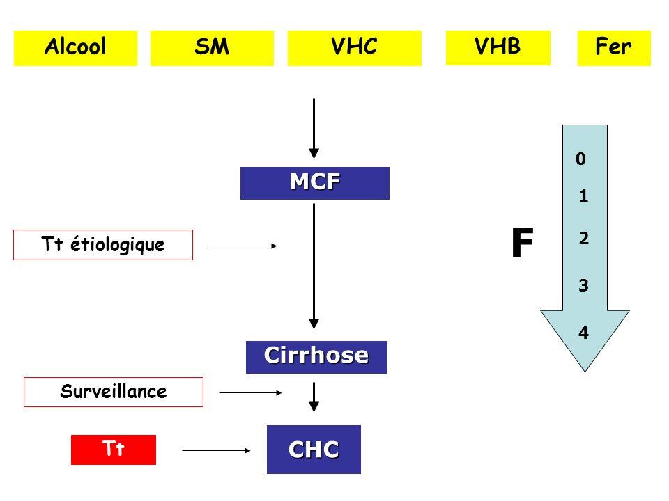 F Alcool SM VHC VHB Fer MCF Cirrhose CHC Tt étiologique Surveillance
