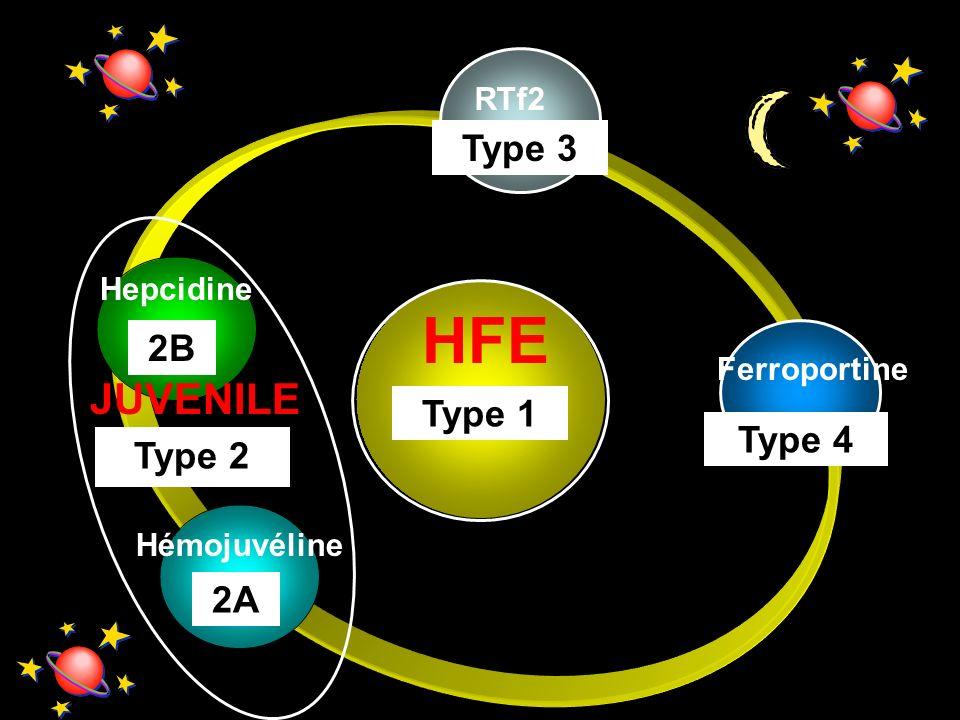 HFE JUVENILE Type 3 2B Type 1 Type 4 Type 2 2A RTf2 Hepcidine