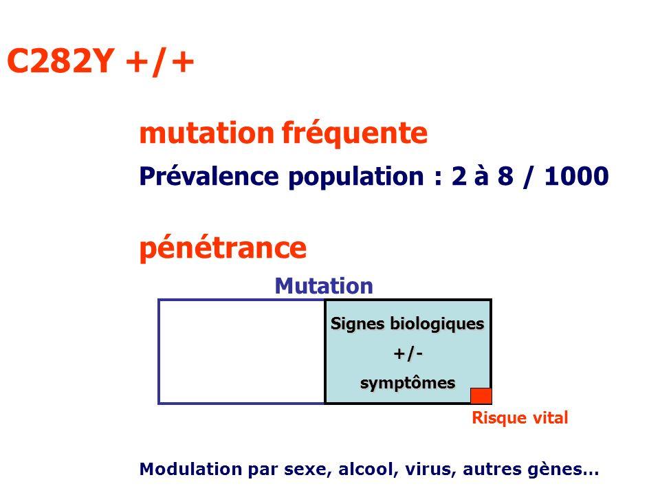 C282Y +/+. mutation fréquente. Prévalence population : 2 à 8 / 1000