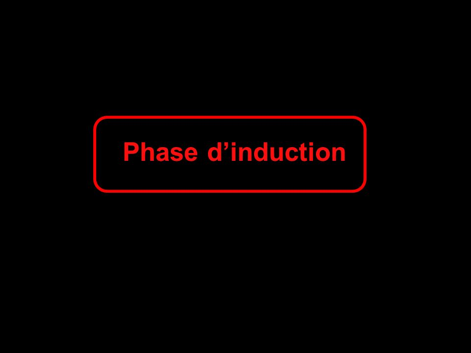 Phase d'induction 90