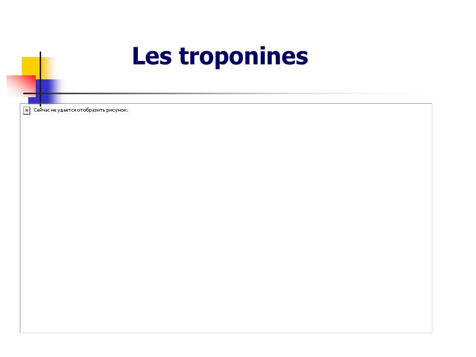 Les troponines