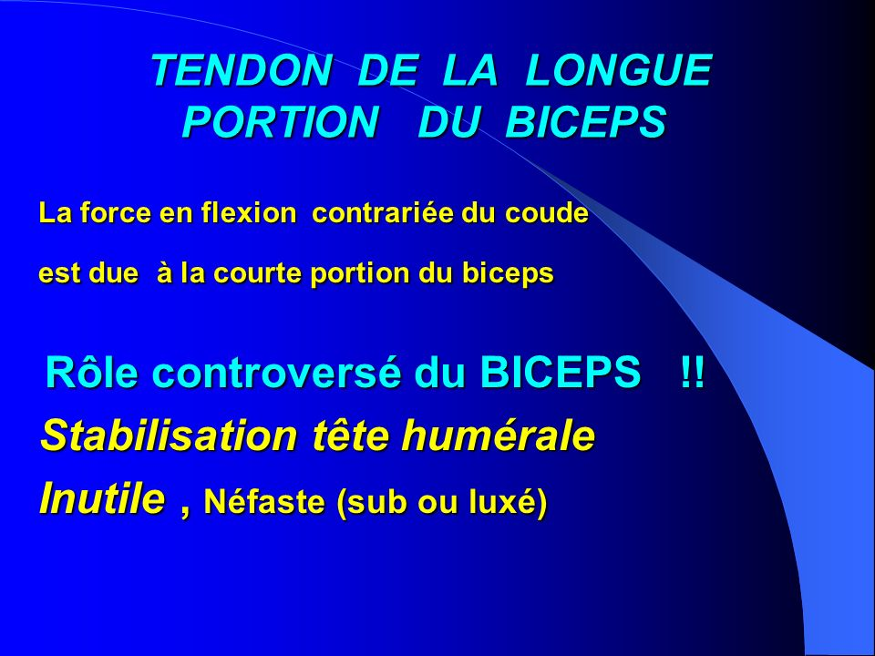 TENDON DE LA LONGUE PORTION DU BICEPS