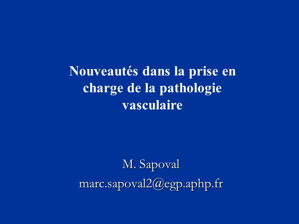 M. Sapoval marc.sapoval2@egp.aphp.fr