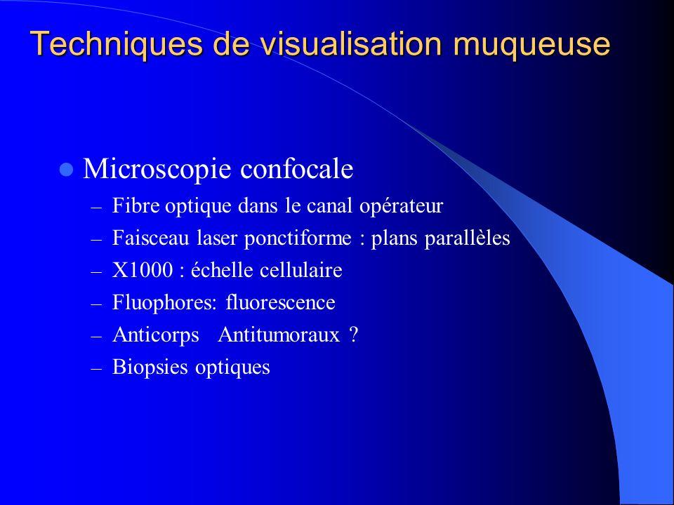 Techniques de visualisation muqueuse