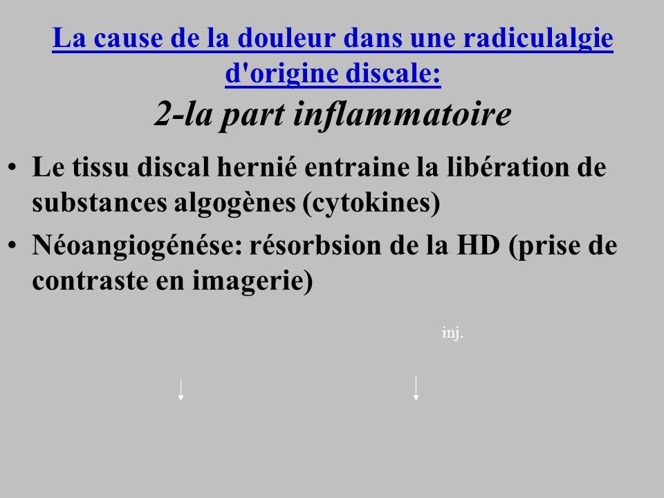 Néoangiogénése: résorbsion de la HD (prise de contraste en imagerie)