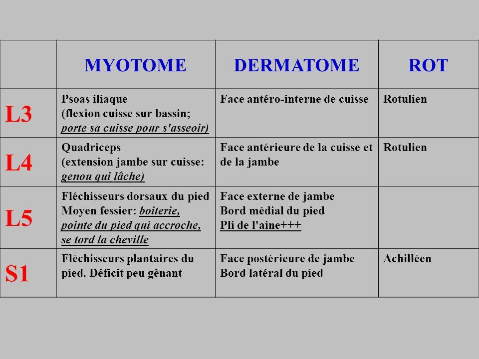 L3 L4 L5 S1 MYOTOME DERMATOME ROT Psoas iliaque