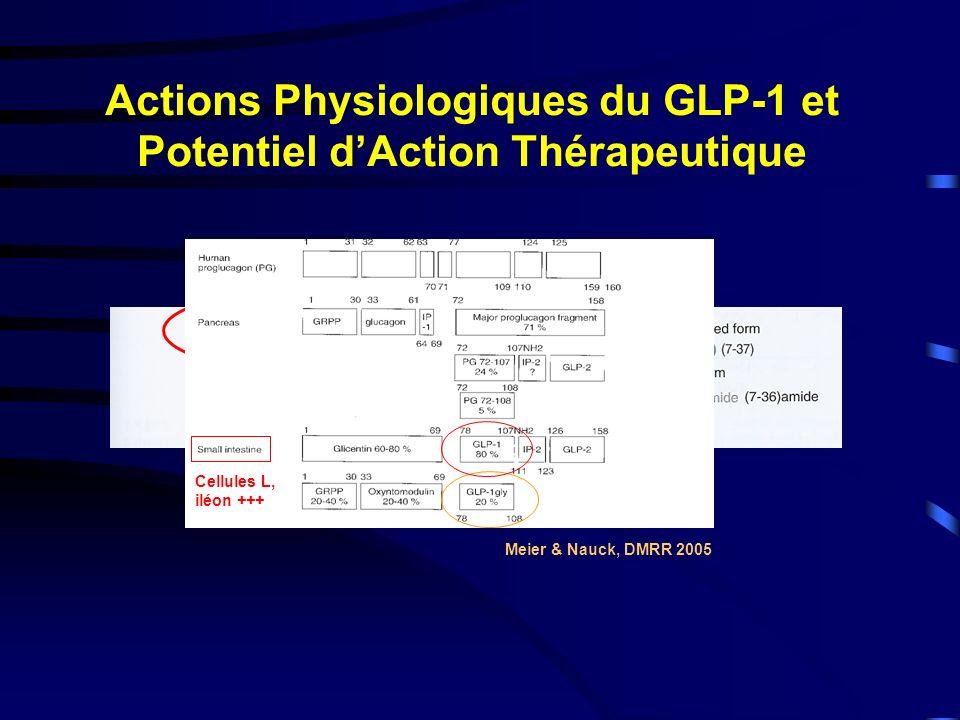 Actions Physiologiques du GLP-1 et Potentiel d'Action Thérapeutique