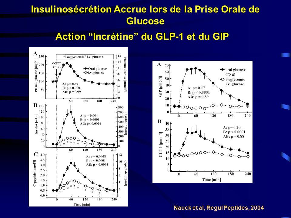 Insulinosécrétion Accrue lors de la Prise Orale de Glucose