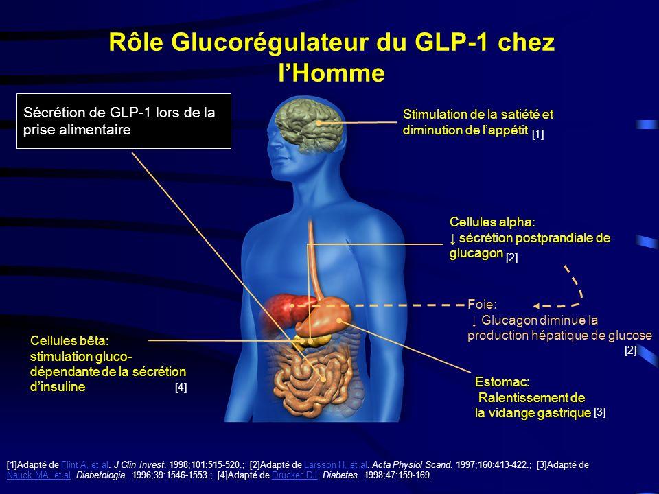 Rôle Glucorégulateur du GLP-1 chez l'Homme