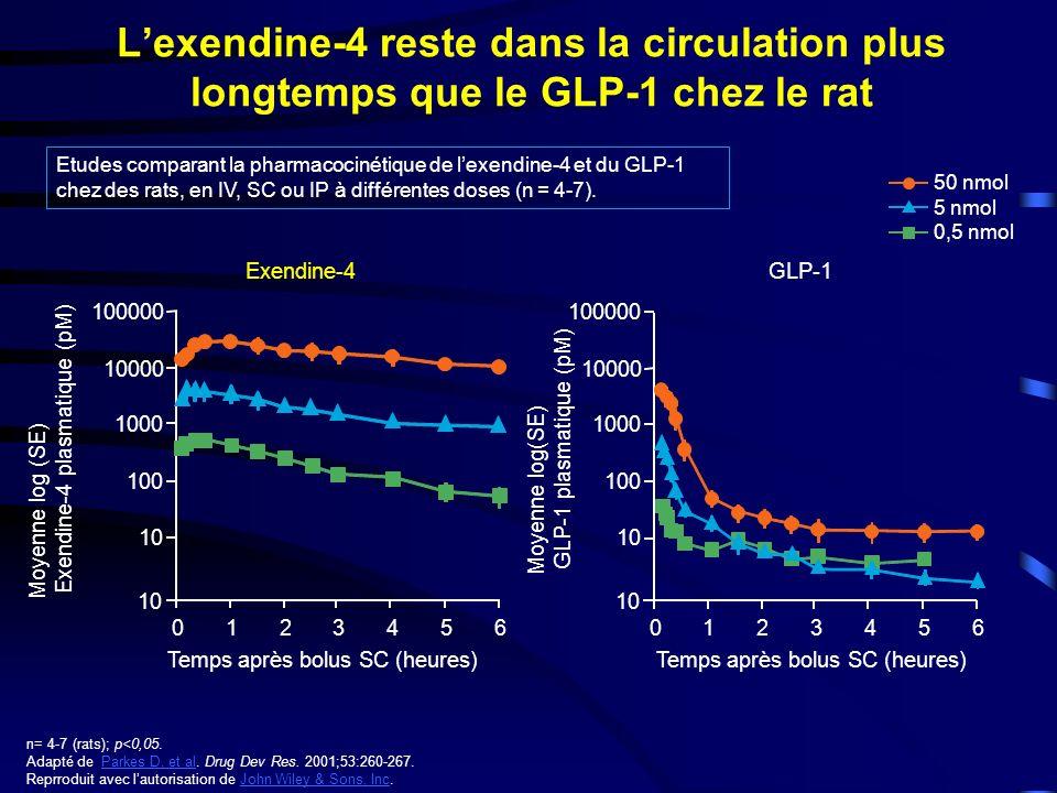 L'exendine-4 reste dans la circulation plus longtemps que le GLP-1 chez le rat