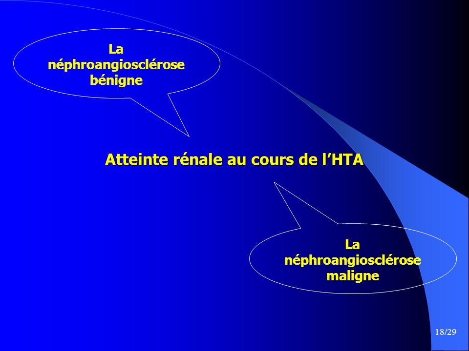 Atteinte rénale au cours de l'HTA