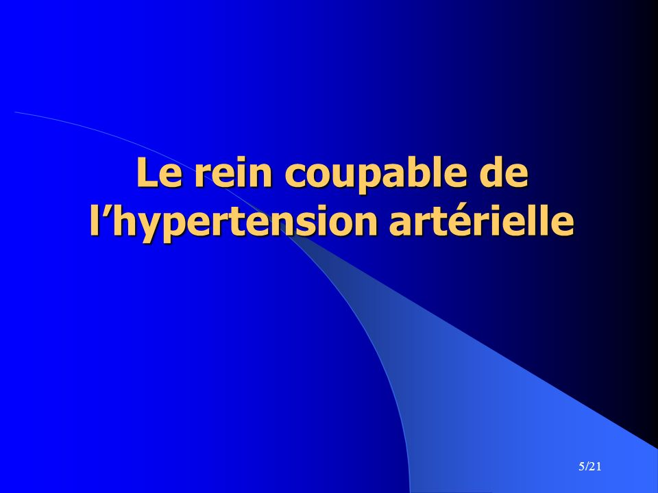 Le rein coupable de l'hypertension artérielle