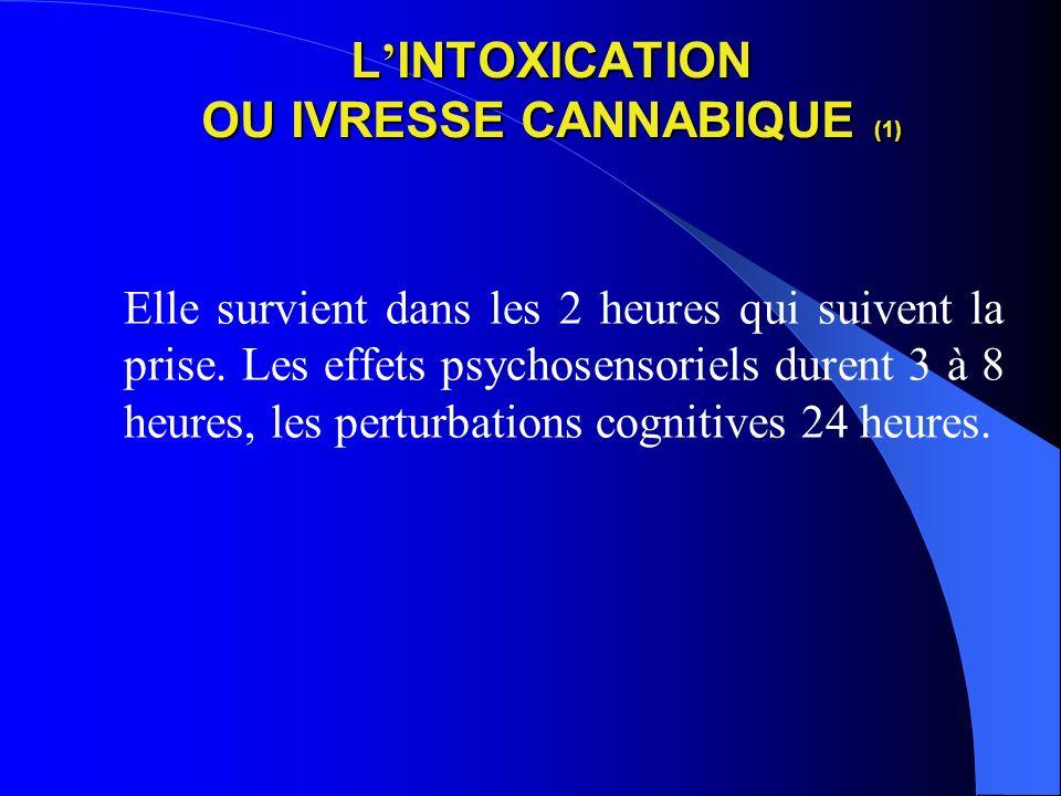 L'INTOXICATION OU IVRESSE CANNABIQUE (1)