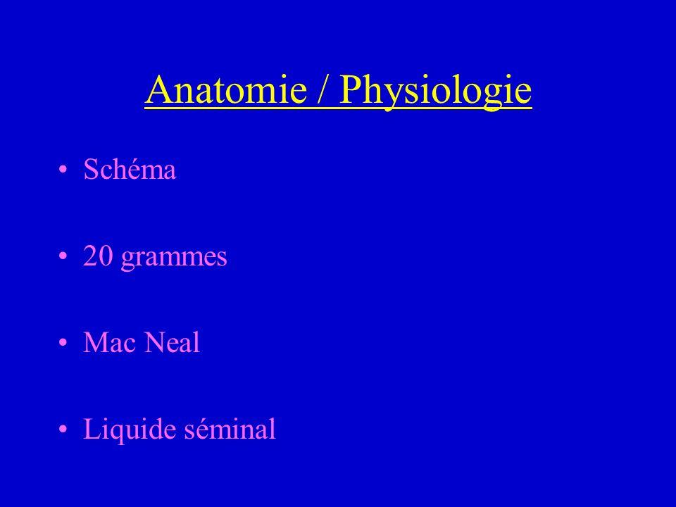 Anatomie / Physiologie