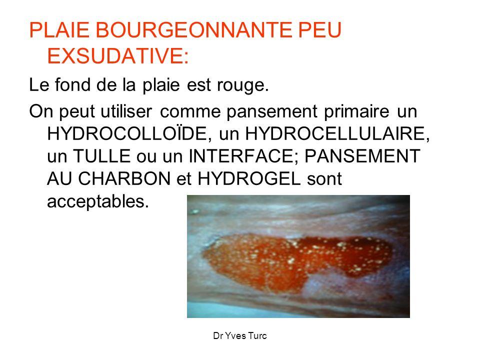 PLAIE BOURGEONNANTE PEU EXSUDATIVE: