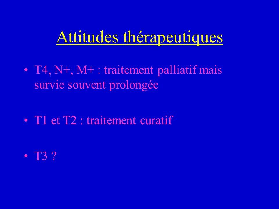 Attitudes thérapeutiques