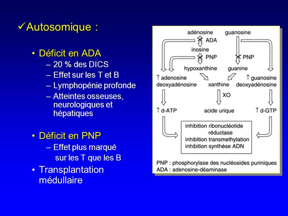 Autosomique : Déficit en ADA Déficit en PNP Transplantation médullaire