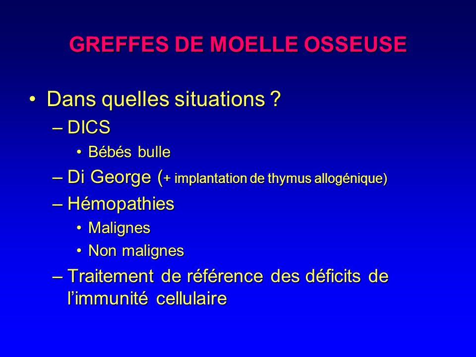 GREFFES DE MOELLE OSSEUSE