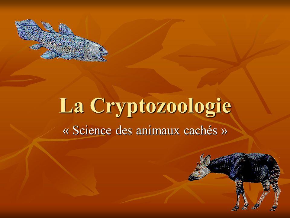 « Science des animaux cachés »