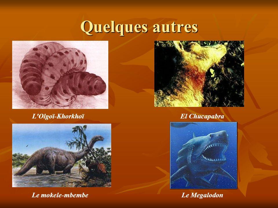 Quelques autres L Olgoï-Khorkhoï El Chucapabra Le mokele-mbembe