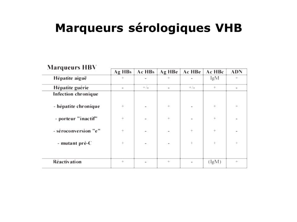 Marqueurs sérologiques VHB