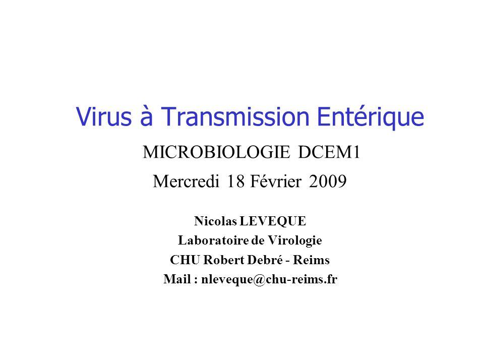 Virus à Transmission Entérique MICROBIOLOGIE DCEM1 Mercredi 18 Février 2009
