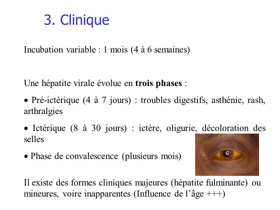 3. Clinique Incubation variable : 1 mois (4 à 6 semaines)
