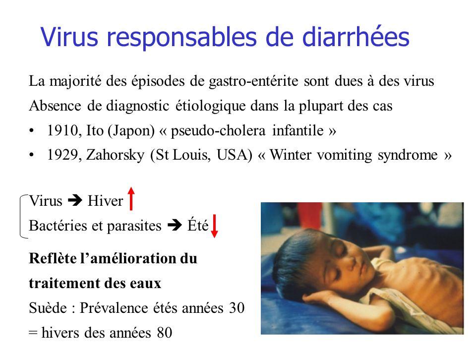Virus responsables de diarrhées