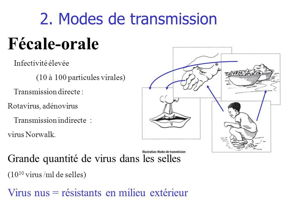Fécale-orale 2. Modes de transmission