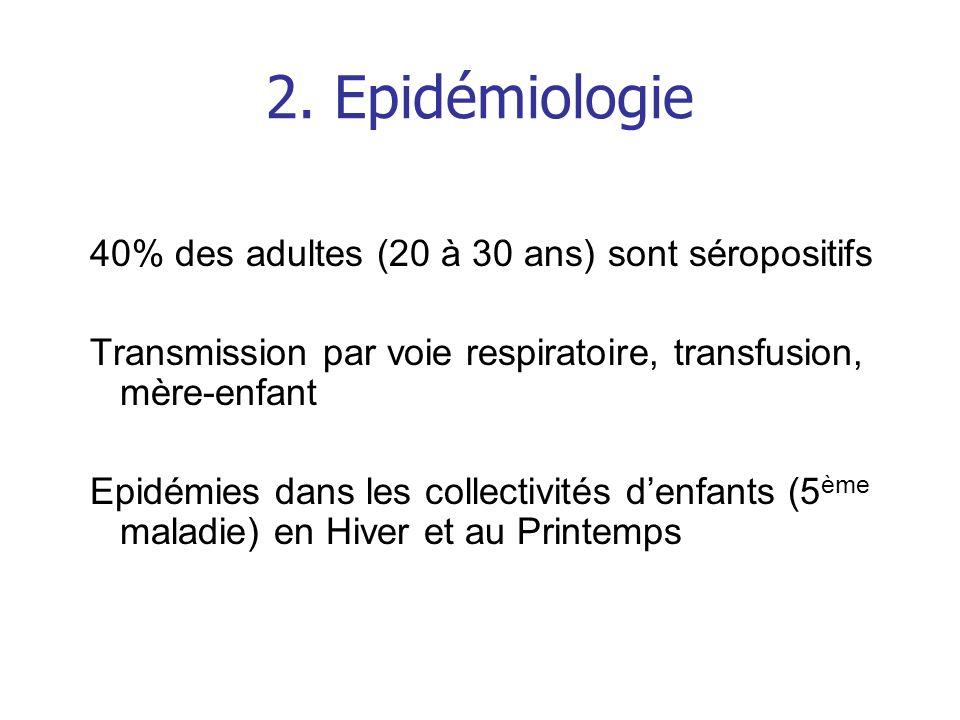 2. Epidémiologie 40% des adultes (20 à 30 ans) sont séropositifs