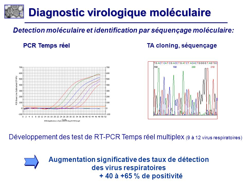 Diagnostic virologique moléculaire