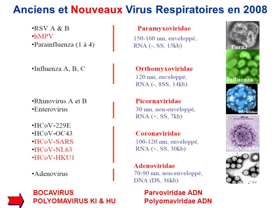 Anciens et Nouveaux Virus Respiratoires en 2008
