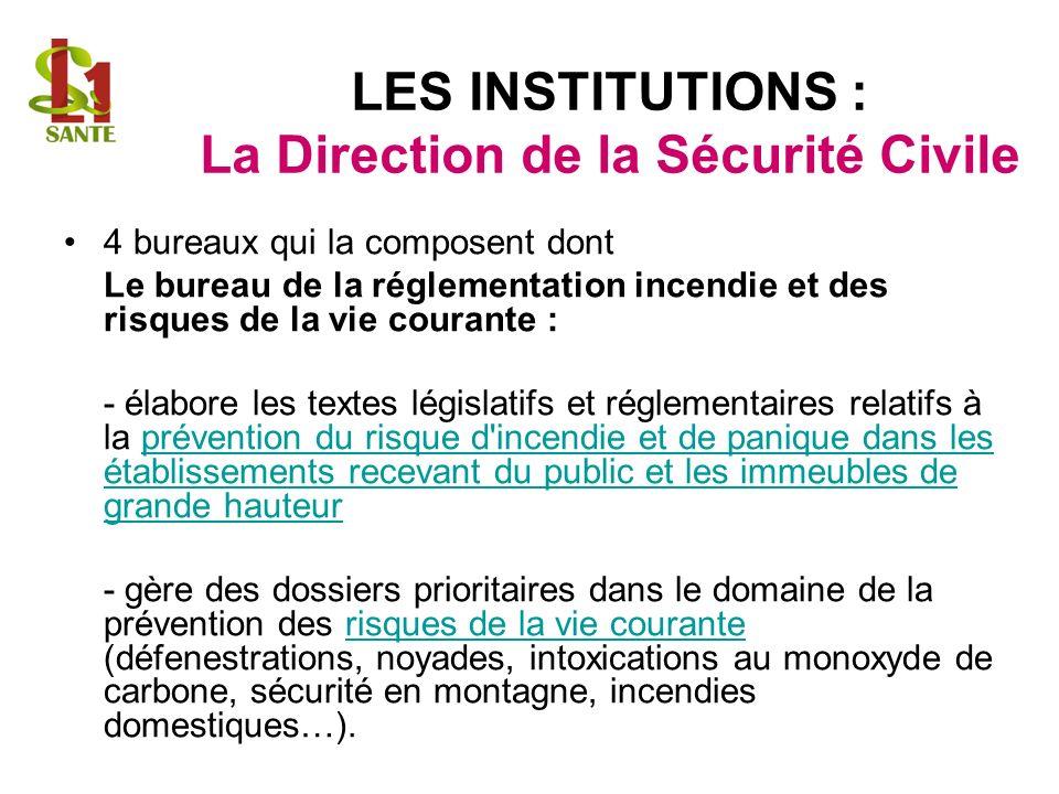 LES INSTITUTIONS : La Direction de la Sécurité Civile