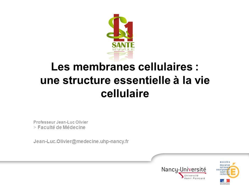 Les membranes cellulaires :