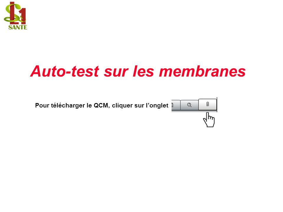 Auto-test sur les membranes