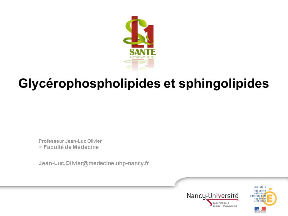 Glycérophospholipides et sphingolipides