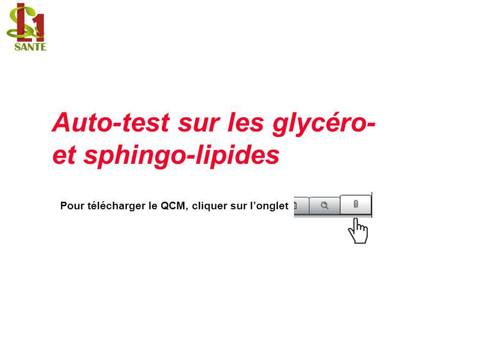 Auto-test sur les glycéro- et sphingo-lipides