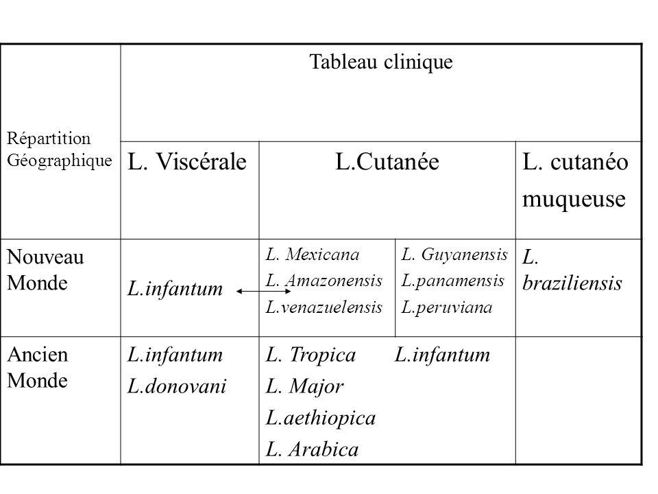 L. Viscérale L.Cutanée L. cutanéo muqueuse Tableau clinique