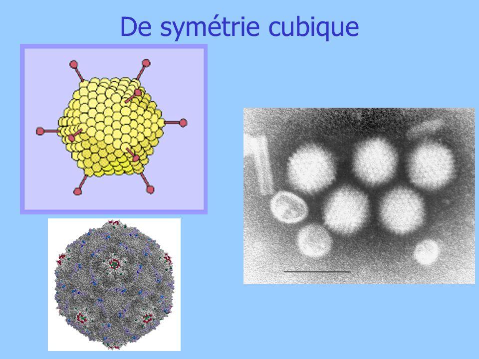 De symétrie cubique