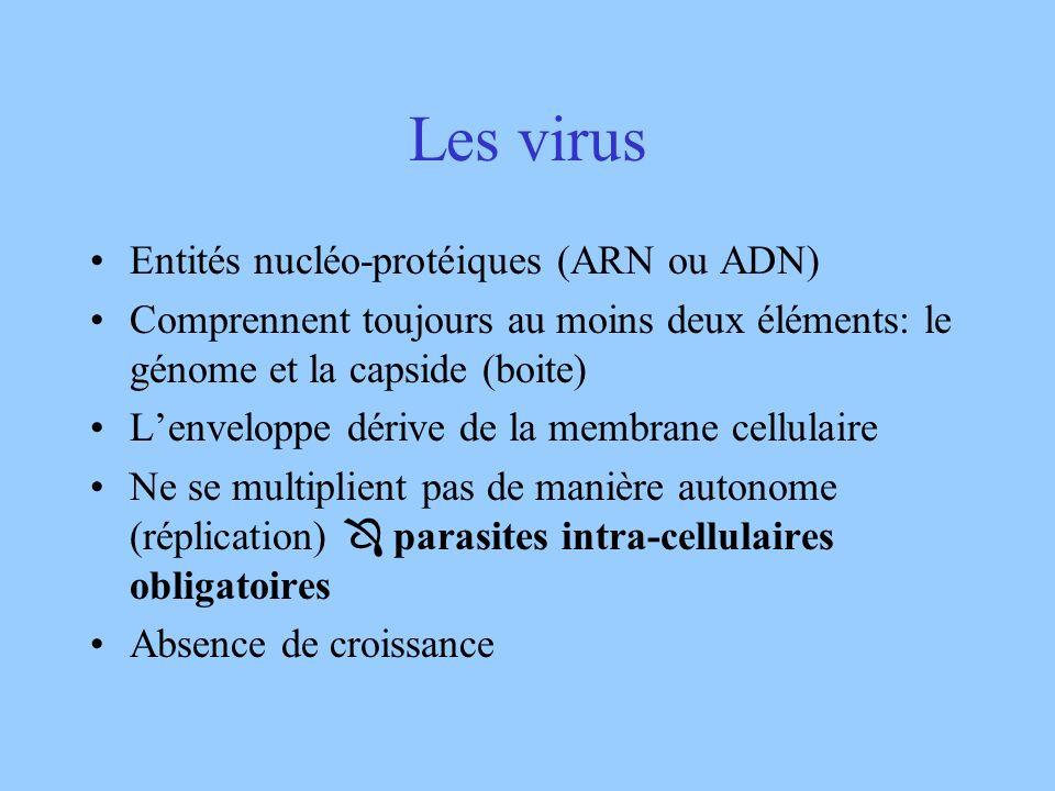 Les virus Entités nucléo-protéiques (ARN ou ADN)