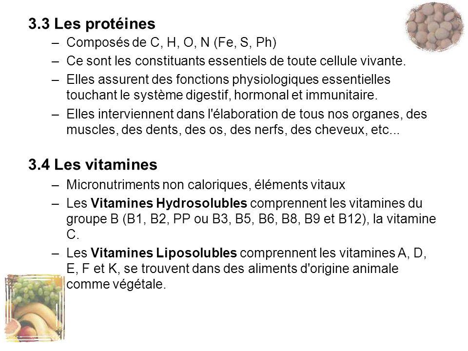 3.3 Les protéines 3.4 Les vitamines Composés de C, H, O, N (Fe, S, Ph)
