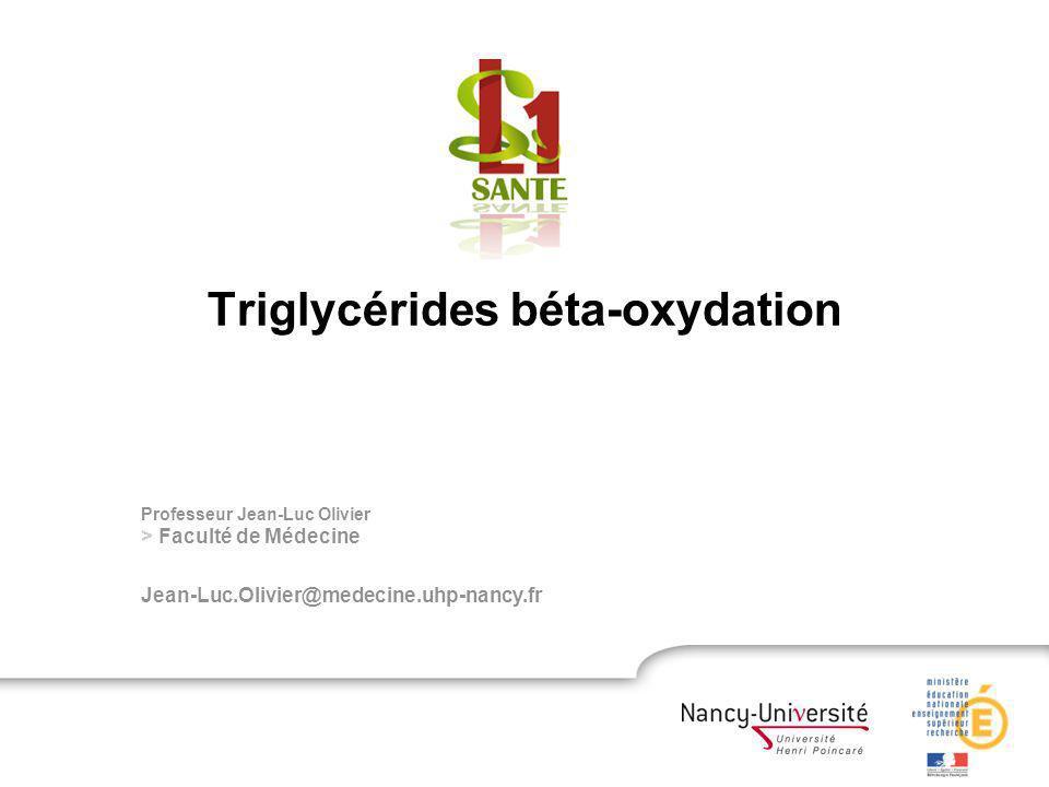 Triglycérides béta-oxydation